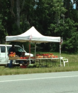 "Although Georgia is the ""Peach State,"" you can't go anywhere in South Carolina without running into a roadside peach stand..."